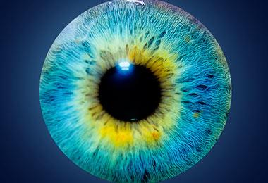 home_vision_treatment5